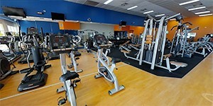 Gyms, Sports Clubs and Fitness Centers